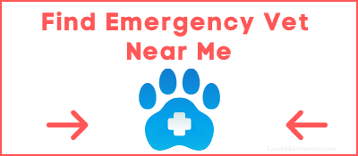 Find Emergency Vet Near Me