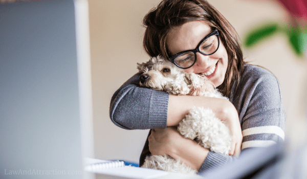 Spend time with your pet